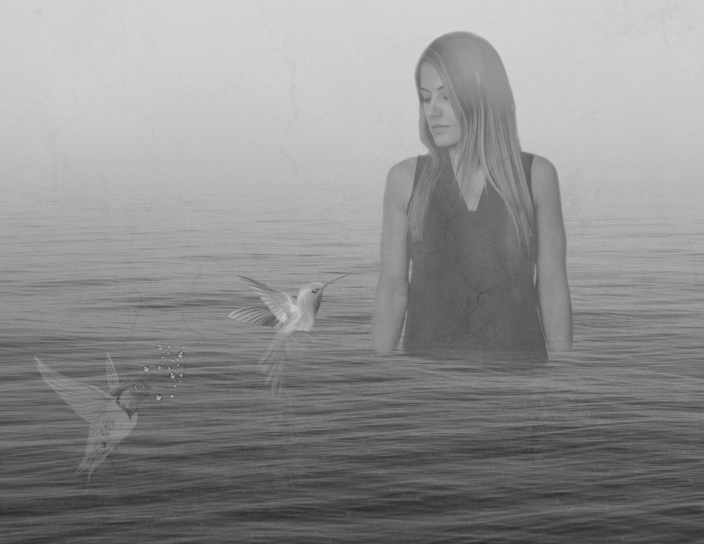 A girl stands waist-deep in a foggy ocean, watching as two humming birds seem to drown.
