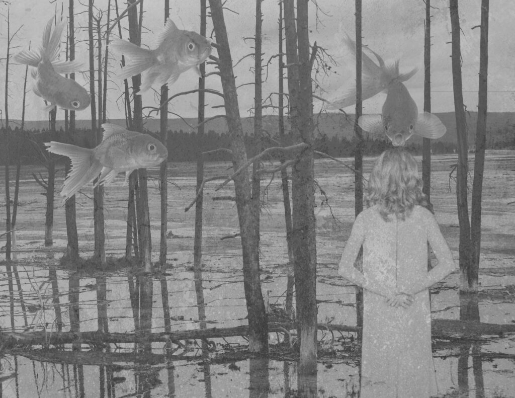 A girl stands with her back too us looking past flooded trees. Four goldfish swim in the air among the trees.
